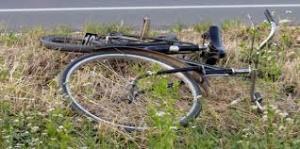 Bicikla u travi