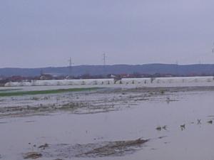Poplava plastenici 3